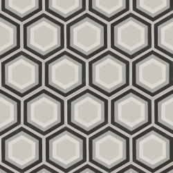 Monochrome Patisserie Hexagon Encaustic Tile