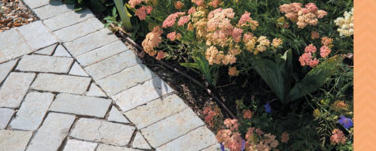 SSG336-CP-curates-blog-images-Garden4