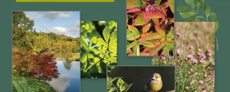 140421_CaPietra_Blog_NT_Introducing_WoodlandGlade_ImagesImage1