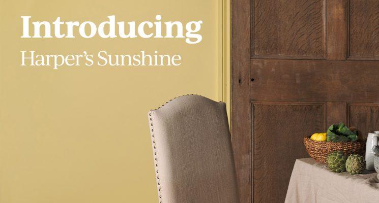 Introducing Harper's Sunshine