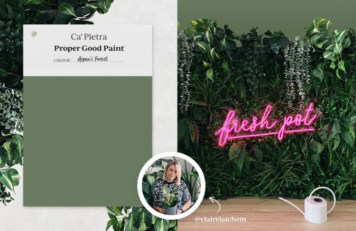 Aspen's Forest, featured on Claire Latchem's faux living wall
